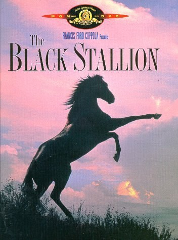 "You think ""Black Stallion"" was a really confusing, boring movie."