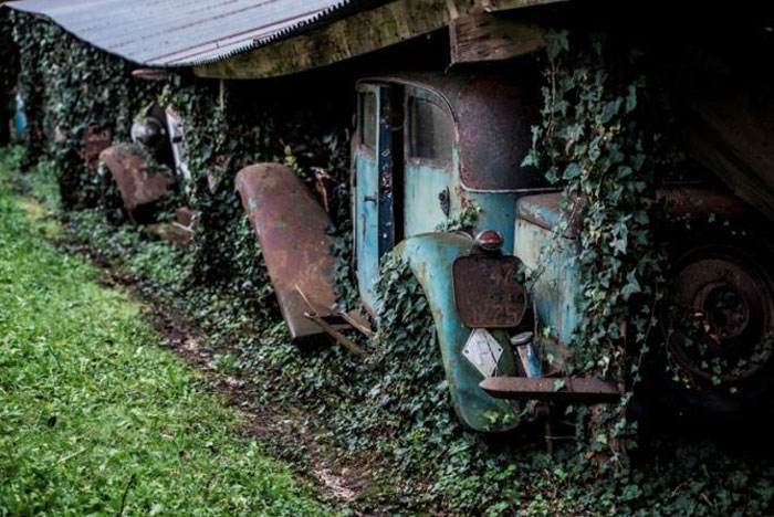60 Rare Cars Worth Millions Found in French Countryside, Untouched for 50 Years (12)