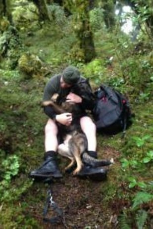 After Being Lost For 7 Days, This Police Dog Was Totally Psyched To Be Back With His Owner