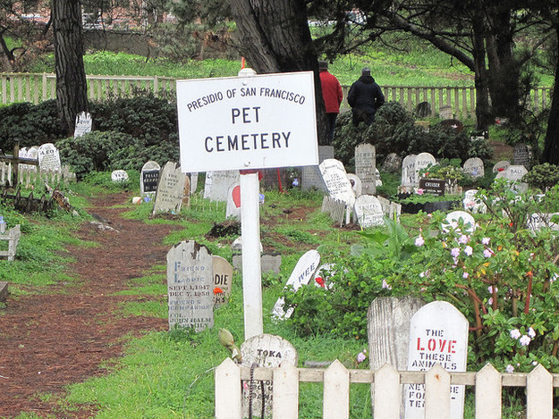 And a pet cemetery in the Presidio.