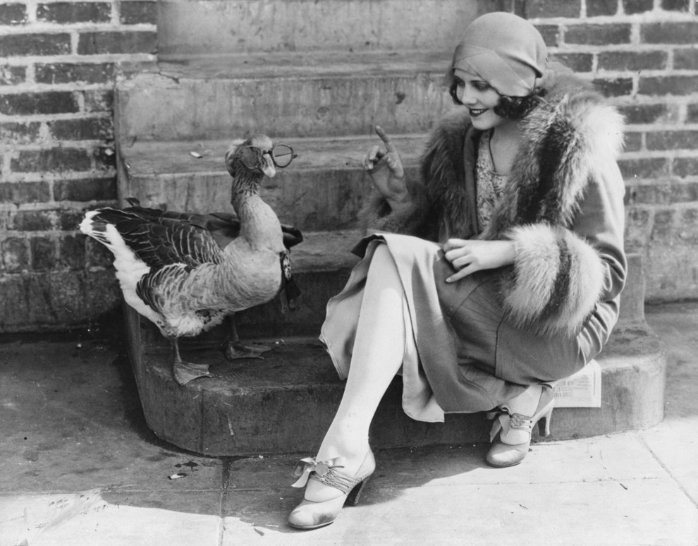 Proof That Animal Lovers In The 1920s Were Totally Insane