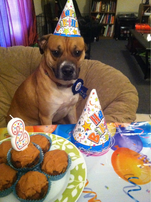 """""""Another year, another party for one. Thanks a lot."""""""