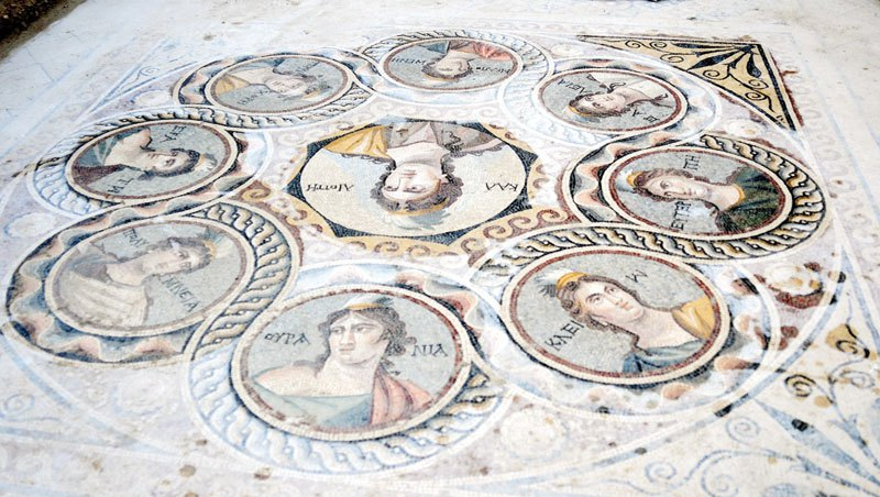 ancient mosaics discovered in ancient greek city of zeugma (4)