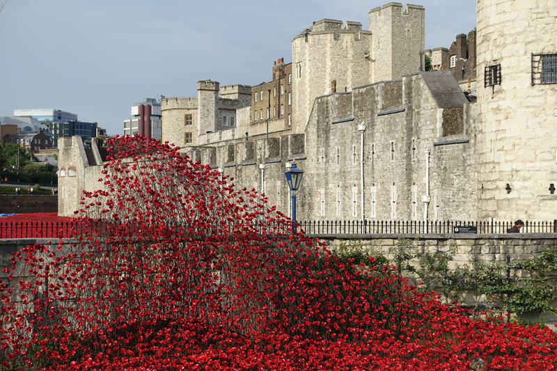 Tower of London's 888,246 Ceramic Poppies Commemorate Every British Soldier Lost in WWI (2)