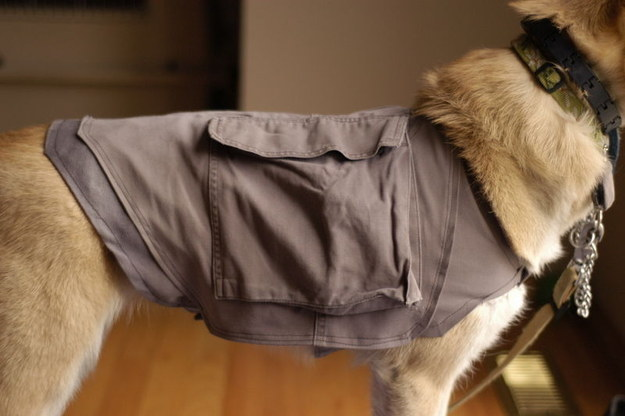 You can actually make a cooling pack for your dog.