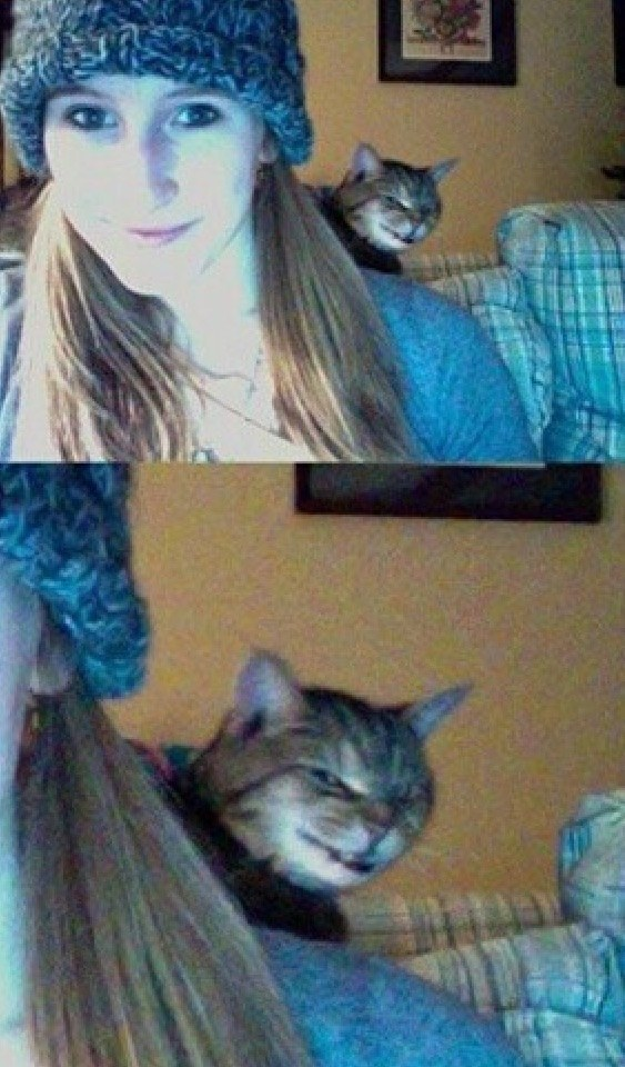 And this cat who has ruined literally every selfie this poor girl has taken.