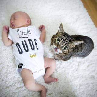 Lil Bub Is Totally Adorable At Being A Big Sister